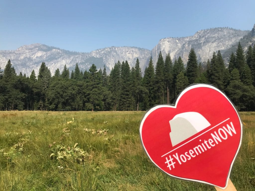 #YosemiteNOW Meadow